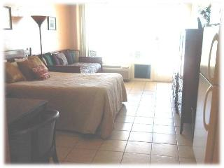 Oceanfront Condo at Daytona Beach - Ponce Inlet vacation rentals