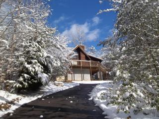 'Bearfoot 2' ... location doesn't get any better! - Townsend vacation rentals
