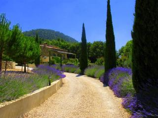 Gorgeous 4 Bedroom House- Haut Vaucluse in Stunning Elevated Location - Luberon vacation rentals