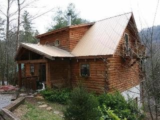 'Genesis' .. awesome location, River, Park, Cove - Townsend vacation rentals