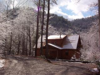 'Genesis' chalet sleeps 11/ awesome location - Blount County vacation rentals