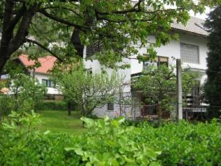 Large apartment with garden not far away from Bled - Slovenia vacation rentals