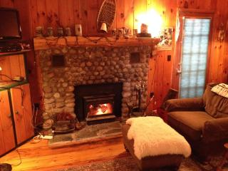 Delightful Mountain Cottage on pristine lake - Pottersville vacation rentals