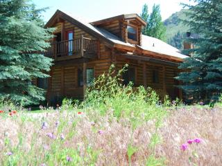 Beautiful Log Home in Hailey to rent Summer/Winter - Hailey vacation rentals