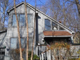 Beach House in the Mountains  (Massanutten Resort) - Massanutten vacation rentals