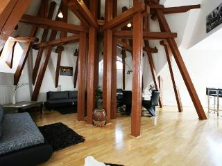 Attic Kozi - Superior three bedroom apartment - Prague vacation rentals