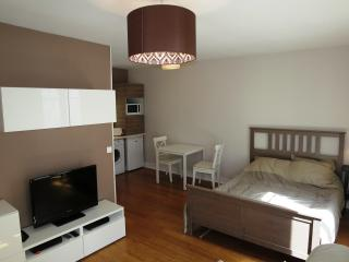 Lovely studio two steps away from Eiffel Tower - Paris vacation rentals