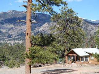 Cute As A Button - Front Range Colorado vacation rentals