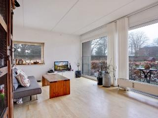 Cosy Copenhagen apartment near Frederiksberg Garden - Koge vacation rentals