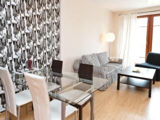 Luxury Apartment in Warsaw close to the Old Town - Warsaw vacation rentals