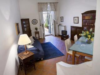 2-bedroom apt with terrace in the centre of Naples - Venice vacation rentals