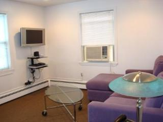 Furnished apartment in Boston and Cambridge area. - Boston vacation rentals