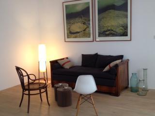 Loft style apartment near the Parliament - Visegrad vacation rentals