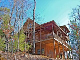 SUNDANCE SPIRIT - Blue Ridge vacation rentals
