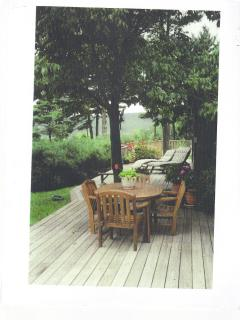 Woodstock Secluded MT Top Home with  Swimming pool - Woodstock vacation rentals