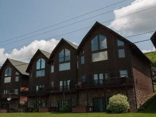 Cedar Shores Villa #15 - McHenry vacation rentals