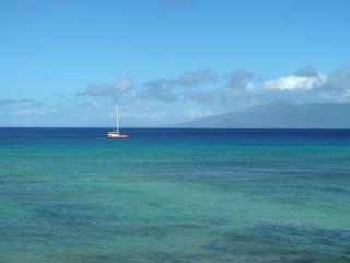 Lokelani 2 Bedroom Ocean Front Condo, West Maui - Lahaina vacation rentals