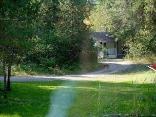 Eagle Moon Cottage - Grand Forks vacation rentals