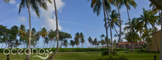 Beach Village 228 - Image 1 - Humacao - rentals