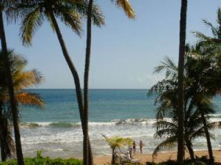Crescent Cove 100 - Puerto Rico vacation rentals