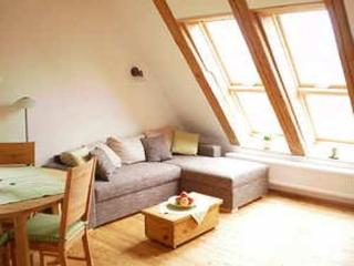 LLAG Luxury Vacation Apartment in Ravensburg - 592 sqft, located on a spacious farm - fun for the whole… - Bad Waldsee vacation rentals