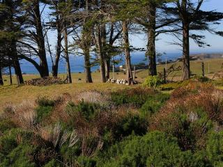 Almost Paradise - Bodega Bay vacation rentals