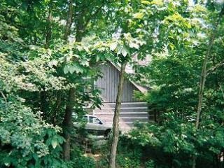 White Tail Ridge - 2 bd cabin w/ hot tub - Vilas vacation rentals
