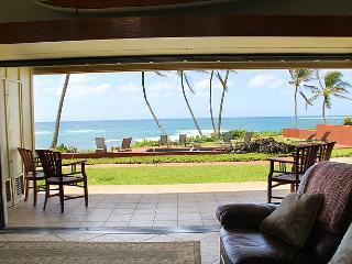 Hale Awapuhi Villa #1B - Wailua Ocean Front Condo - Kapaa vacation rentals