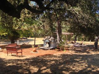 County Home in park setting  meadow, hottub, WiFi - Santa Cruz vacation rentals