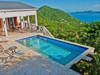 Sage Mountain Villa - Tortola vacation rentals