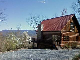 Lizards Look Out Cabin - Blue Ridge vacation rentals