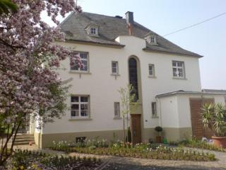LLAG Luxury Vacation Apartment in Koewerich - 861 sqft, modern, spacious, warm (# 2707) - Ockfen vacation rentals