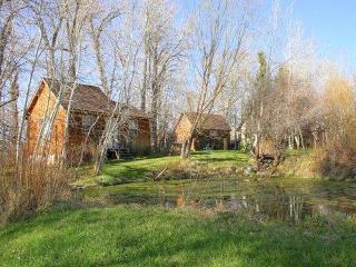 Deep Creek Guest Cabin - Livingston vacation rentals