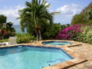Waterfront Beach Dreams- pool- jetted tub, tropical gardens & snorkeling - Mahoe Bay vacation rentals