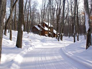 Trails End - Northwest Michigan vacation rentals