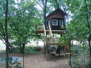 Tree House Vacations in the Shawnee Forest! - Illinois vacation rentals