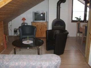 Vacation Apartment in Neckargemünd - 753 sqft, great view, wood stove (# 2888) - Neckarsteinach vacation rentals