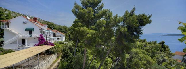 Villa Tamara - Villa Tamara Apartment A2 - Zavala - rentals