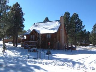 Hebert - Angel Fire vacation rentals