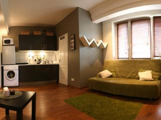 Marszalkowska Apartment - Central Warsaw Studio - Central Poland vacation rentals
