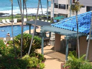 Kona Reef One Bedroom Oceanview Condo End Unit - Kailua-Kona vacation rentals