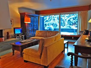 Apartment Emilie - Zermatt vacation rentals