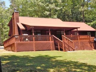 Bearadise Retreat-  Amazing  cabin, Hot Tub & View - Ellijay vacation rentals