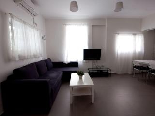 beautiful luxury apartment on the beach - Tel Aviv vacation rentals