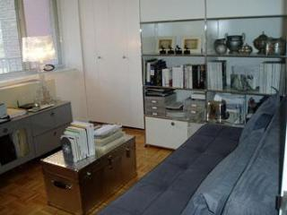 YE2910  - fine 2 bed, 2 bath midtown apartartment - New York City vacation rentals