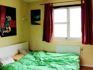 Copenhagen apartment at Forum metro - Copenhagen vacation rentals