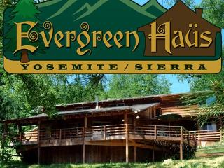 Evergreen Haus - Yosemite/Sierra-Mtn Cabin Lodging - Oakhurst vacation rentals