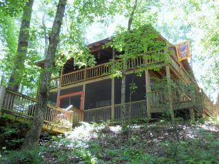 $99/night for party of 2-FISHING BEAR Cabin - Cherry Log vacation rentals