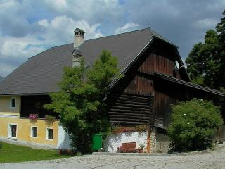 Alter Wirt - 12-14 Pers Apartment. Lungau, Austria - Turracher Hohe vacation rentals