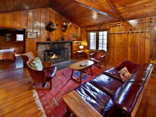 Creek Side Knotty Pine 1930s Lodge on 575 Acres - Greentown vacation rentals